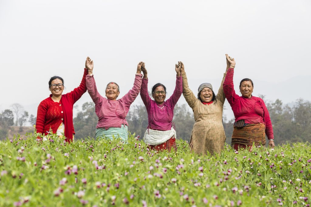 Group of women holding hands in vegetable field