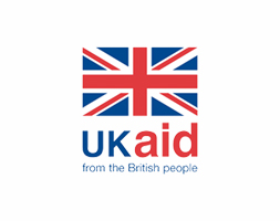 The impacts of COVID-19 on people with disabilities: a rapid review from DFID and Inclusive Futures